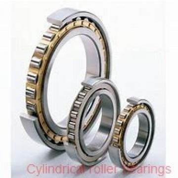 Toyana NU19/560 cylindrical roller bearings