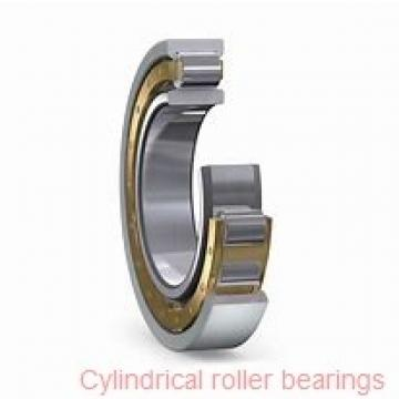 45 mm x 100 mm x 25 mm  Fersa NU309FMNR/C3 cylindrical roller bearings