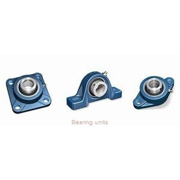 INA RASE100 bearing units #1 image