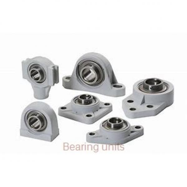 INA RASE100 bearing units #2 image